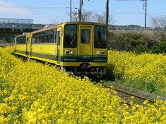 鉄道 いすみ